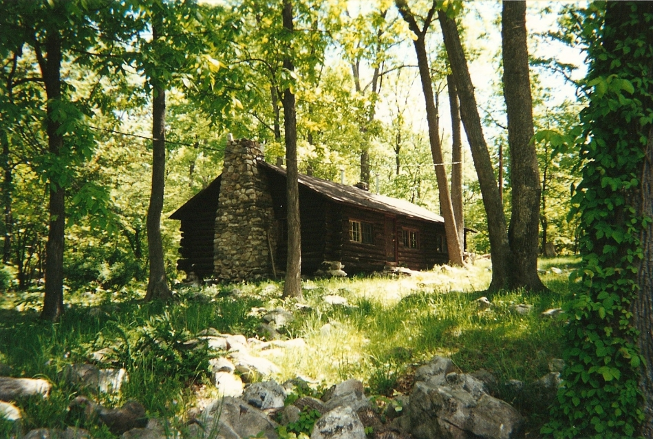 Side-view of the main cabin in its lush surrounds
